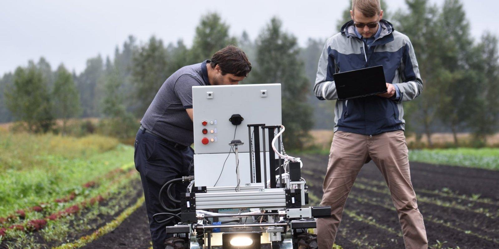 Künstliche Intelligenz statt Chemie auf dem Gemüsebeet