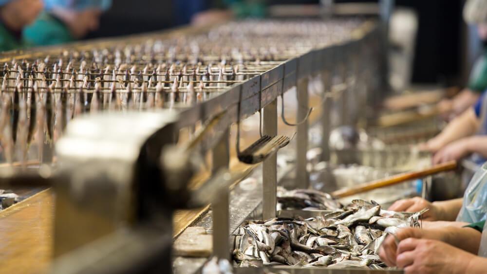 lebensmittelverarbeitung lettland baltikum lettinvest
